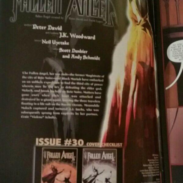 Fallen Angel #30, IDW comics